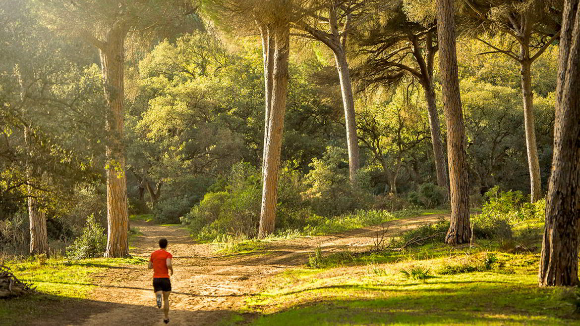 Why choose Sotogrande to live with your family